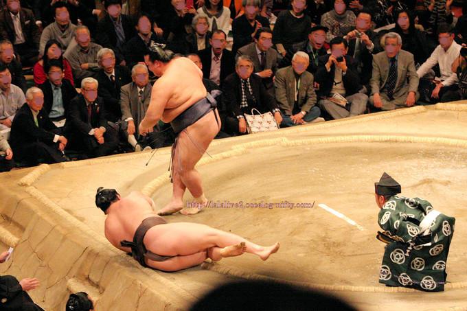 Hatsubasyo2017012216_2