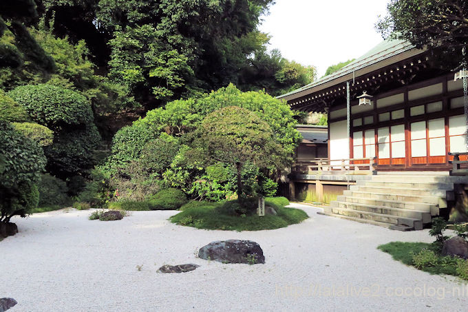 Hokokuji2018094
