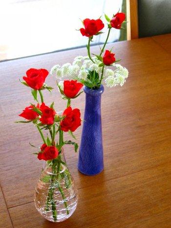 Roses20070430