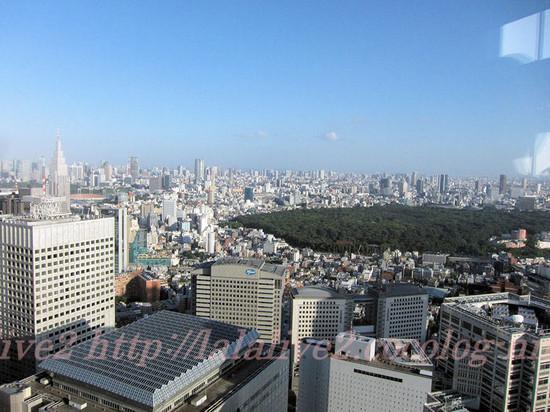 View_from_tokyo_metropolitan_gove_2