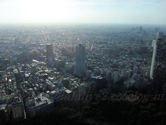 View_from_tokyo_metropolitan_govern