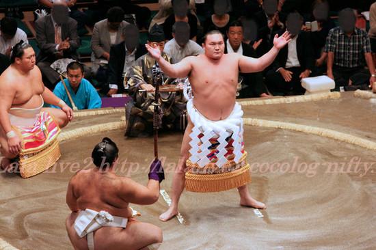 Sumo201309171_3