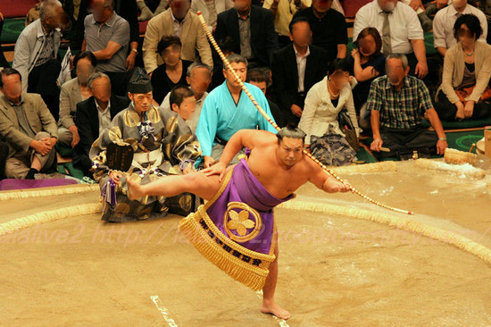 Yumitori201309174