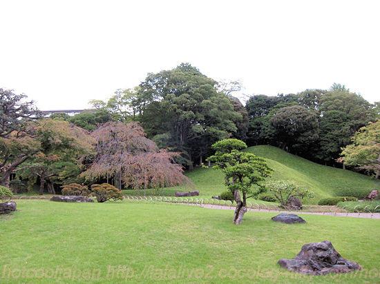 Koishikawa201310213