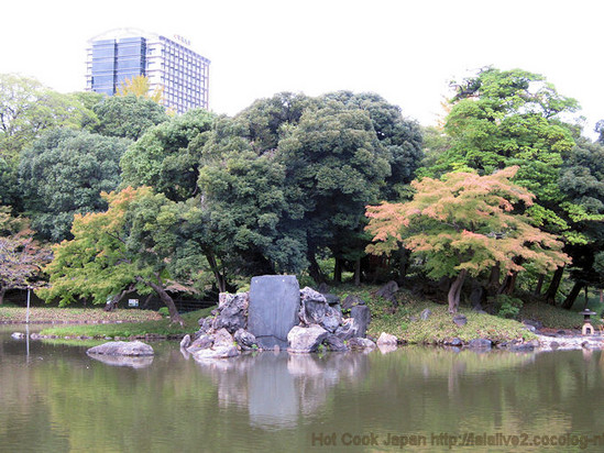 Pond_2